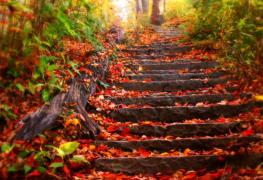autunno-caldo
